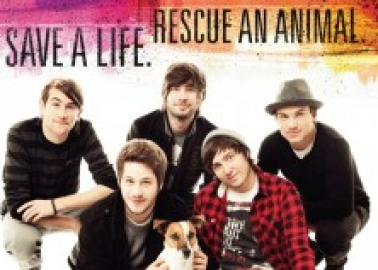 You Me At Six Tells Fans 'Breeders Kill Shelter Dogs' Chances'