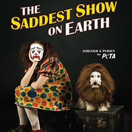 Ashleigh & Pudsey: The Saddest Show on Earth