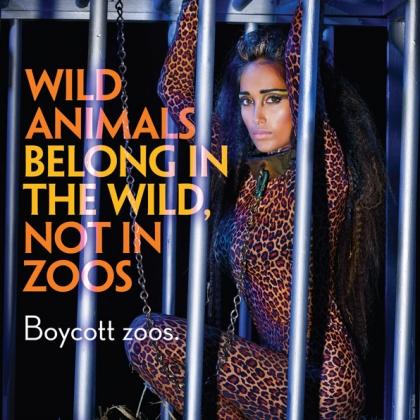 Jiah Khan: Wild Animals Belong in the Wild