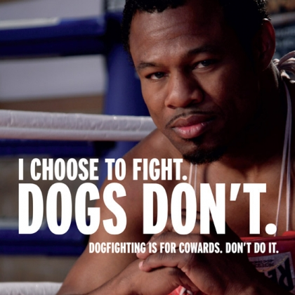 'Sugar' Shane Mosley: Dogfighting is for Cowards