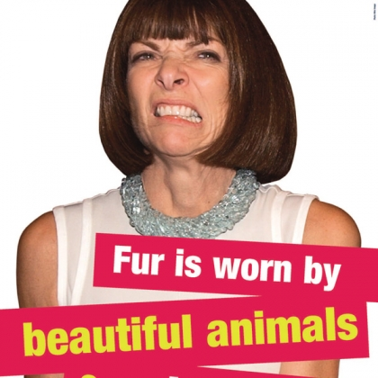Anna Wintour: Fur Is Worn by Beautiful Animals and Ugly People