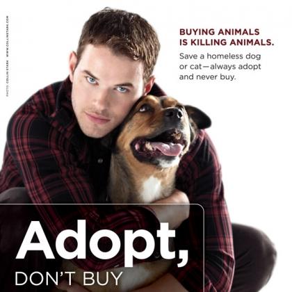 Kellan Lutz: Adopt, Don't Buy