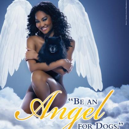 Kimora Lee Simmons: Be an Angel for Dogs
