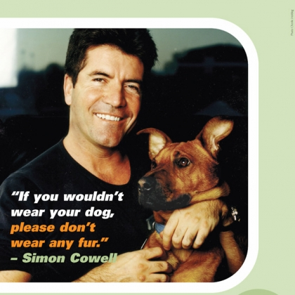 Simon Cowell: If You Wouldn't Wear Your Dog, Don't Wear Any Fur