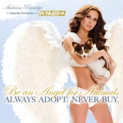 Audrina Patridge: Be an Angel for Animals