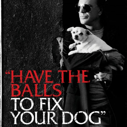 Mickey Rourke: Have the Balls to Fix Your Dog
