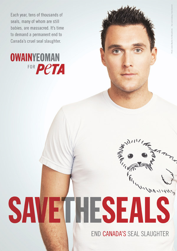 Owain Yeoman: Save the Seals