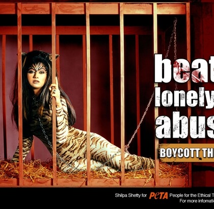 Shilpa Shetty: Beaten, Lonely and Abused
