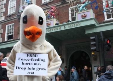 Giant 'Goose' Gatecrashes Fortnum & Mason's Diamond Jubilee Street Party
