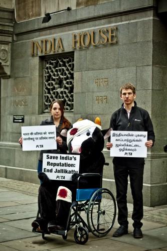 Jallikattu Demonstration outside the Indian High Commission, London