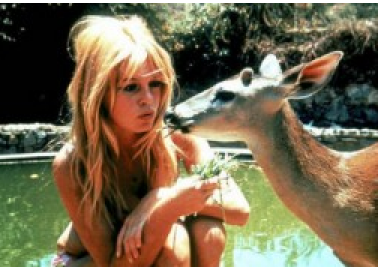 French Screen Legend Brigitte Bardot Joins Call for Mali's Release