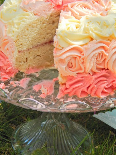 Ombre vanilla dream cake from Katy at Little Miss Meat-Free