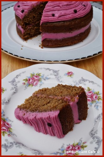 Jasmine's raspberry cake from Self Sufficient Cafe