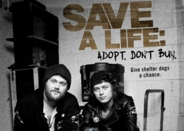Behind the Scenes With Asking Alexandria: 'We're a Band of Dog Lovers and Animal Lovers'