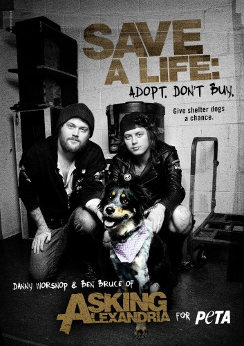 Danny Worsnop and Ben Bruce speak out for shelter dogs