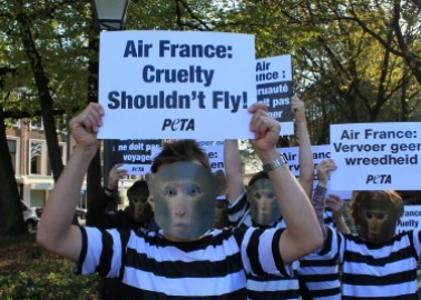 Britain's Most Famous Art Critic Writes Burning Critique of Air France