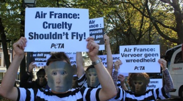 Air-France-demonstration