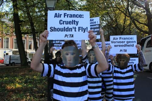 Air France demonstratie foto2
