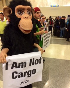 Protest against Air France cruelty