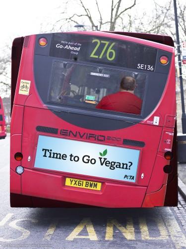 Bus Back