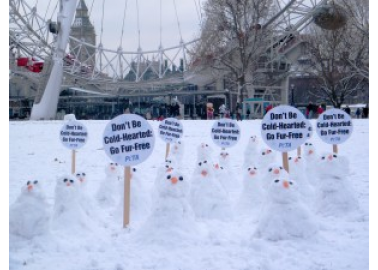 Snow Activists Urge Londoners to Give Fur the Cold Shoulder