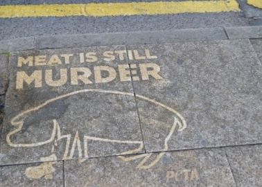 Why Have We Washed Manchester's Pavements to Spread the Veggie Message?