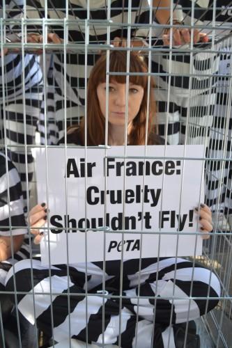 Caged activist speaks out for monkeys
