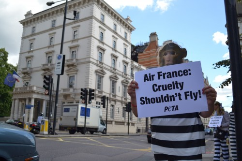 PETA Demo in London against Air France Cruelty