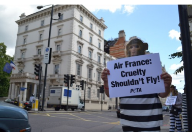 PHOTOS: 'Monkey' Prisoners Call Out Air France Cruelty in London
