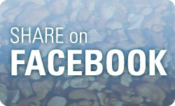 FB Share Button
