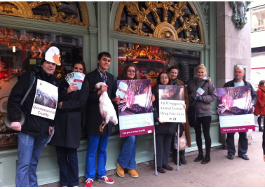 10 Groups: a Single Message Against Cruel Fortnum's Royal Warrants