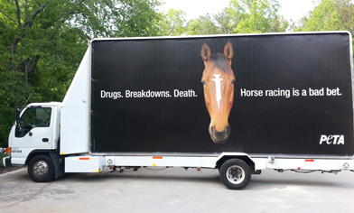 Drugs. Breakdown. Death. PETA Billboard at Kentucky Derby