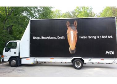 'Drugs. Breakdowns. Death.' PETA US' New Billboard Tells the Real Story of Horseracing