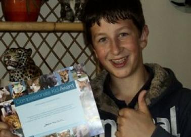 Compassionate Kid: Chris Ware