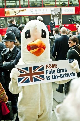 PETA's goose welcoming the Queen