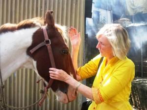Ingird horse