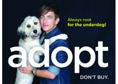 Kevin McHale of 'Glee' Roots for the Underdog