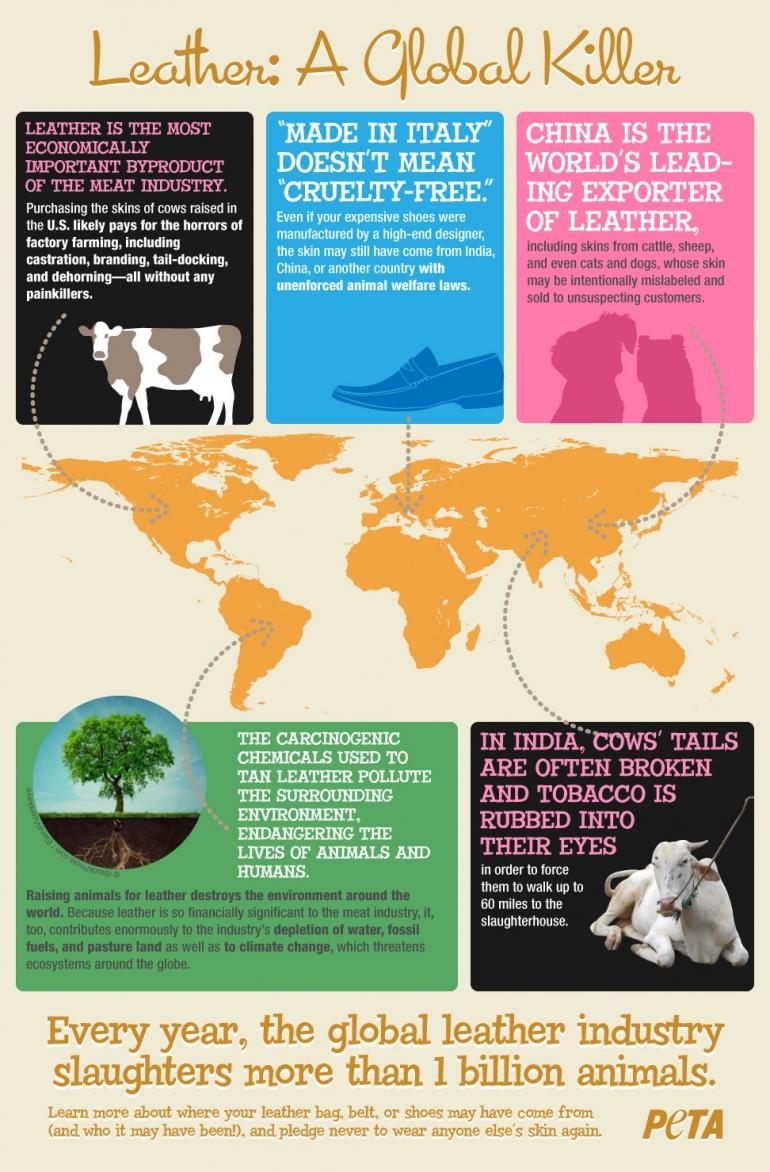 PETA Leather Inforgraphic