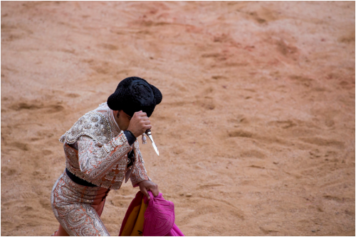 Matador prepares to mutilate animal