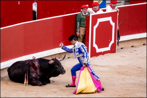 Matador stabs bull