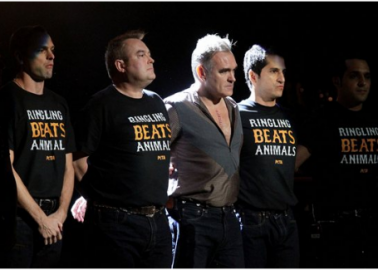 Morrissey Stands Up for Elephants