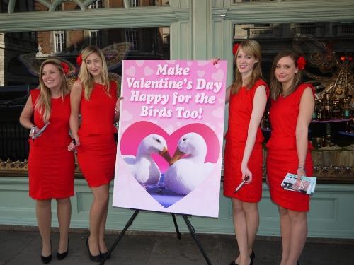 Four Gorgeous Girls Deliver Huge Valentines Day Card to Fortnum – Huge Valentines Card