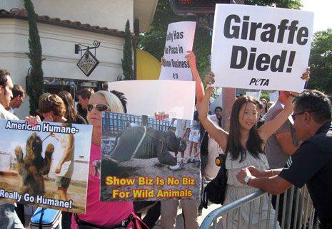 PETA US Zookeeper Demo 1