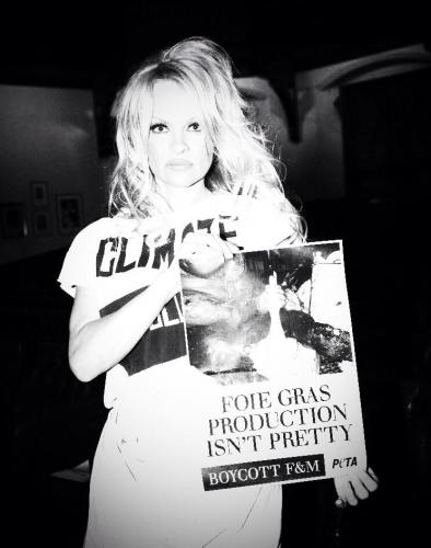 Pamela Anderson to Ewan Venters - Foie Gras is Nor Pretty