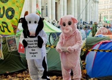 PETA's 'Pig' and 'Cow' Join the 99 per Cent