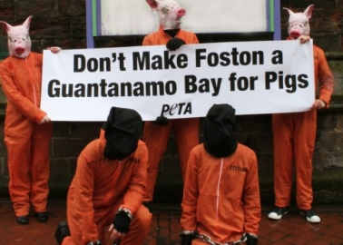 'Pig Prisoners' Protest Foston Factory Farm, 'Guantanamo Bay for Pigs'