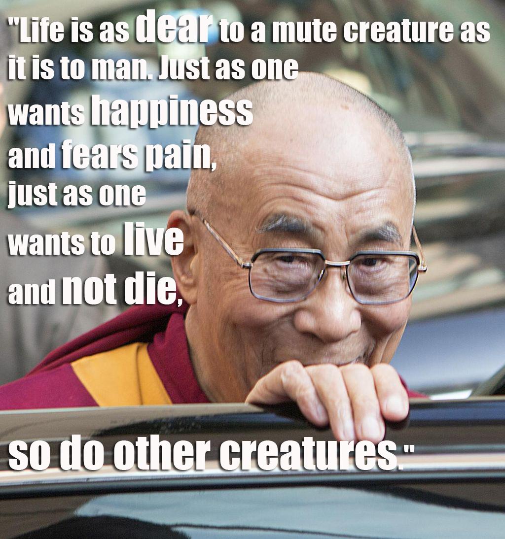 QUOTE Dalai