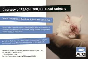 REACH ad