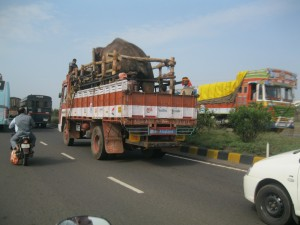 Sunder truck 2