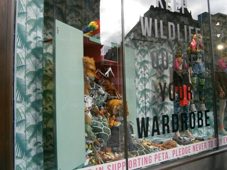 Topshop exotic skins window close-up (small)